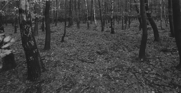 image de l'oeuvre De l'extinction du paysage de  Benjamin Goulon Benjamin Goulon