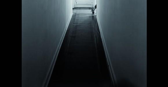 image de l'oeuvre Hover de  Anna Phillips Anna Phillips