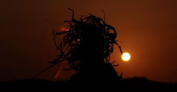 image de l'oeuvre Tomo de  Bakary Diallo Bakary Diallo