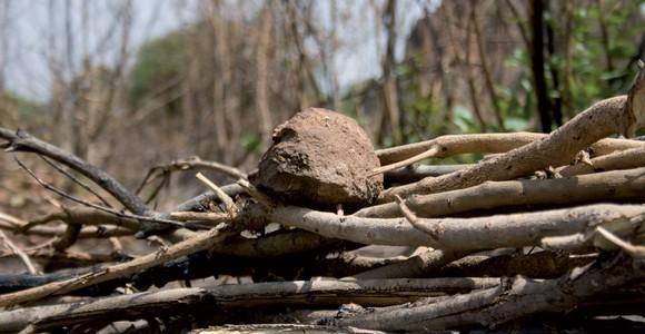image de l'oeuvre Dankumba de  Bakary Diallo Bakary Diallo