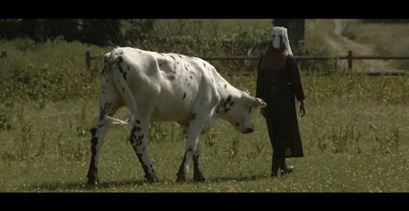 image de l'oeuvre Le souffle du taureau de  Inès Sieulle