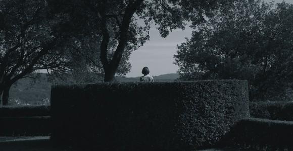 image de l'oeuvre Topiaria de  Jane Leblond Jane Leblond