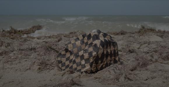image de l'oeuvre Repercussion de  Andrés Padilla Domene Andrés Padilla Domene