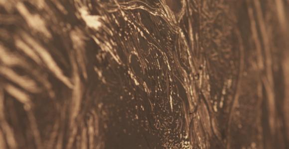 image de l'oeuvre La chute des feuilles de  Léonard Barbier-Hourdin Léonard Barbier-Hourdin
