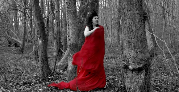 image de l'oeuvre Hon mê de  Laurie Dasnois