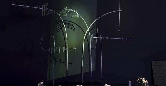 image de l'oeuvre Werviqaceae de  Vincent Pouydesseau Vincent Pouydesseau