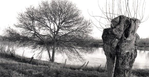 image de l'oeuvre Itinéraire de jean Bricard de  Jean-Marie Straub Jean-Marie Straub