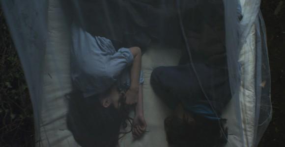 image de l'oeuvre Les résilientes de  Aurélie Kunert Aurélie Kunert